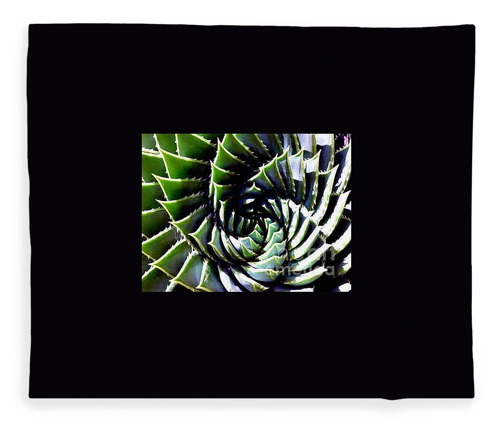 Cactus Fleece Blanket featuring the photograph Cactus by Dragica Micki Fortuna
