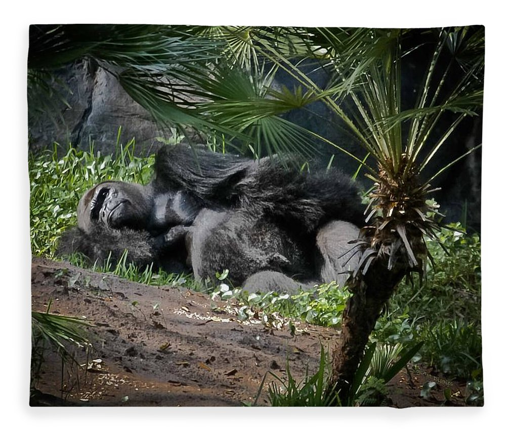 Gorilla Fleece Blanket featuring the digital art Captivity Is Heartbreaking by DigiArt Diaries by Vicky B Fuller