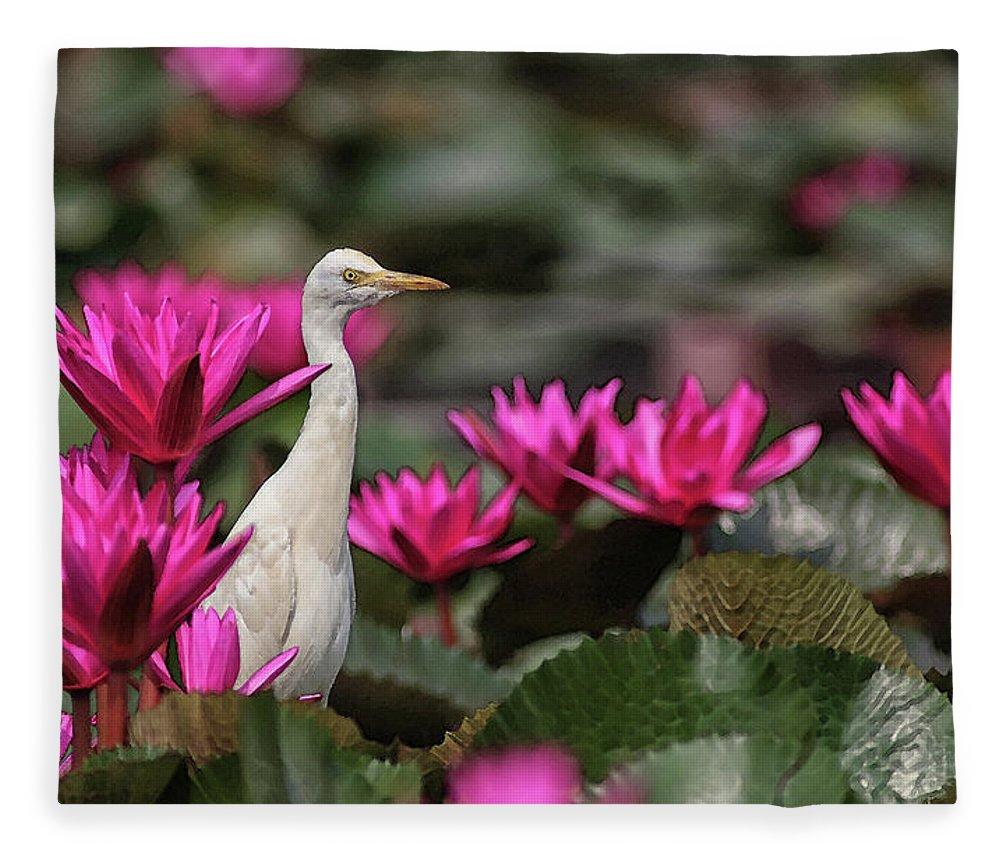 Bird Fleece Blanket featuring the digital art Cattle Egret amongst Waterlilies by Sandeep Gangadharan