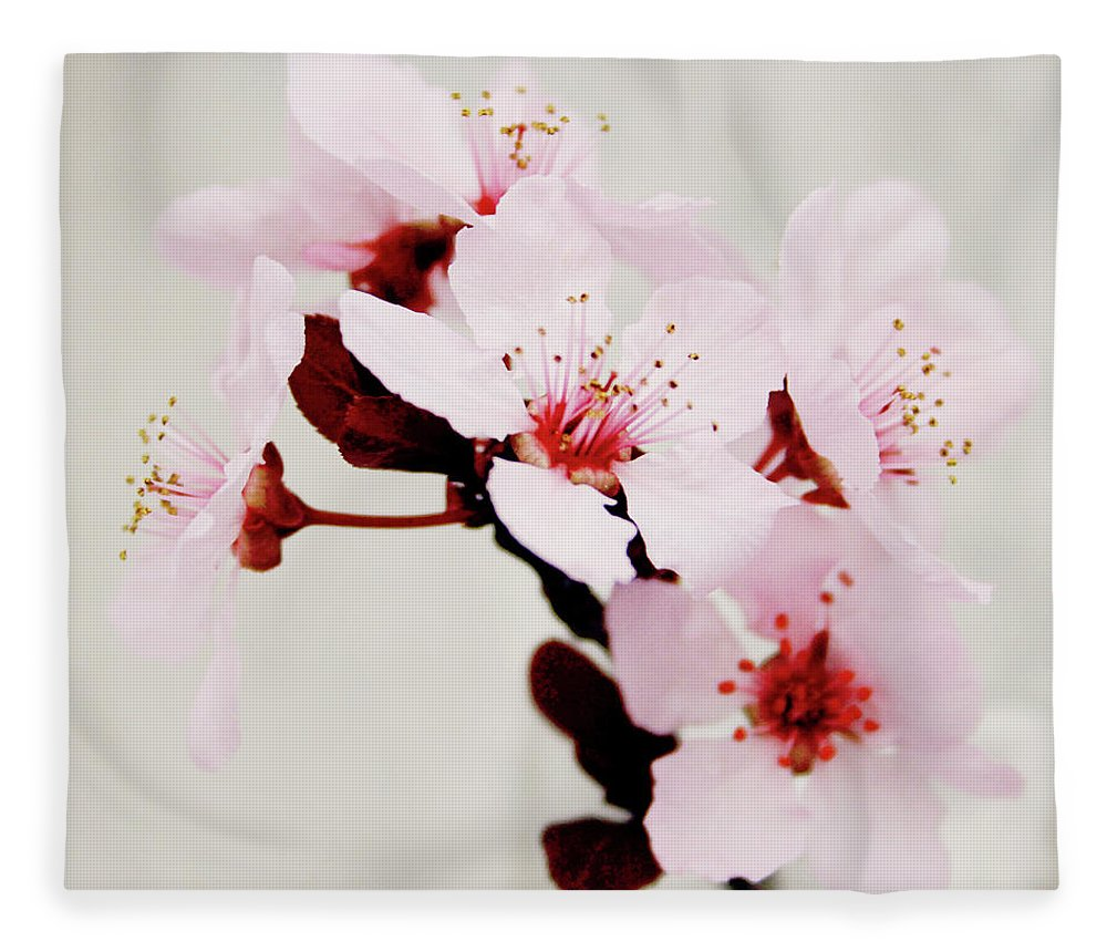 Cherry Blossom Fleece Blanket featuring the mixed media Cherry Blossoms 1- Art By Linda Woods by Linda Woods
