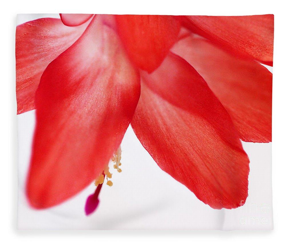 Abstract Fleece Blanket featuring the photograph Christmas Cactus Macro by Karen Adams