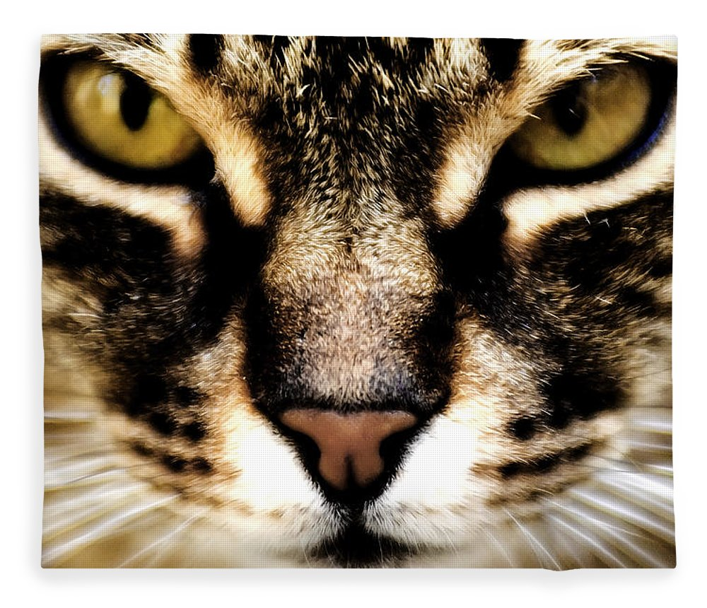 Cat Fleece Blanket featuring the photograph Close Up Shot Of A Cat by Fabrizio Troiani