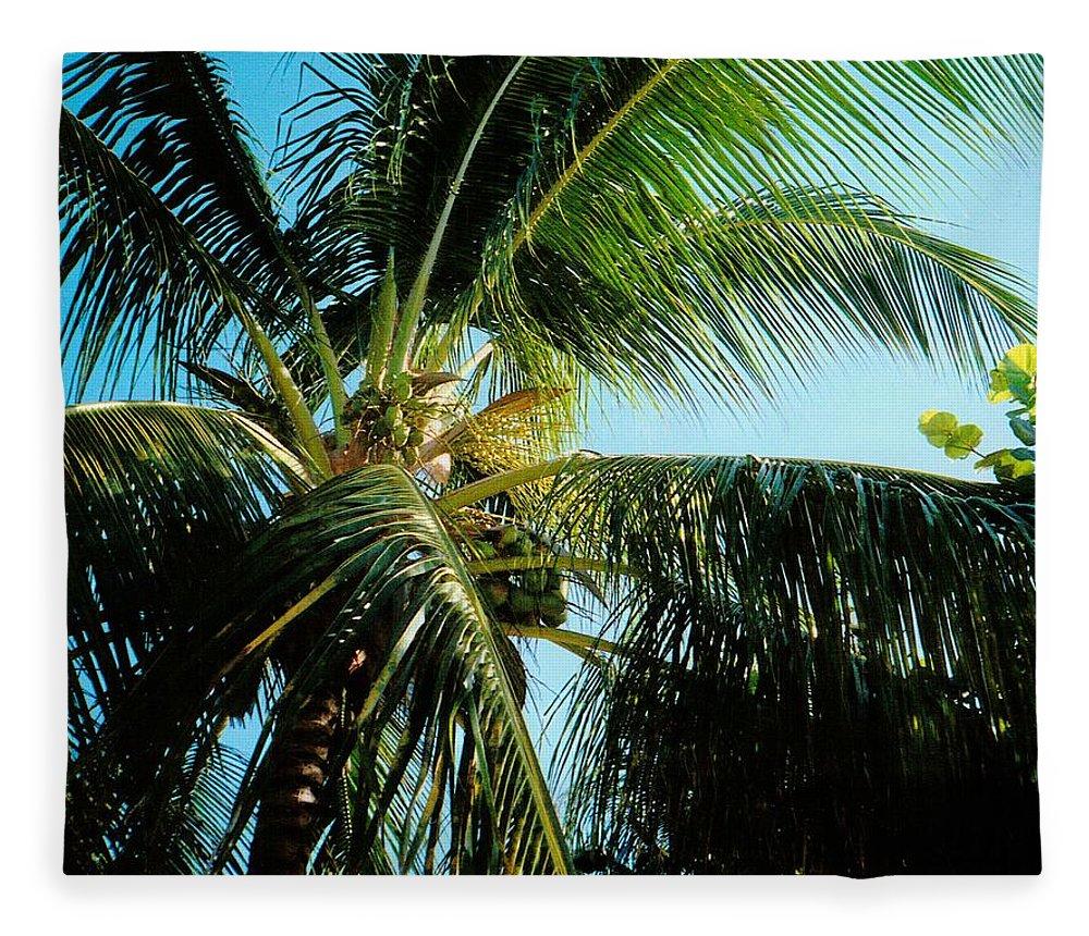 Jamaica Fleece Blanket featuring the photograph Coconut Tree by Debbie Levene