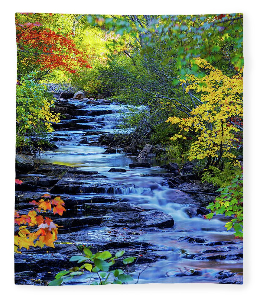 Color Alley Fleece Blanket featuring the photograph Color Alley by Chad Dutson