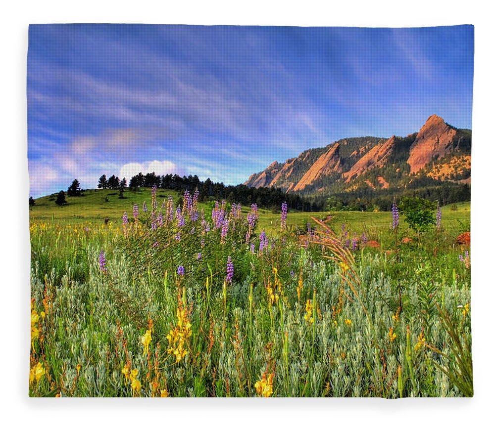 Colorado Fleece Blanket featuring the photograph Colorado Wildflowers by Scott Mahon