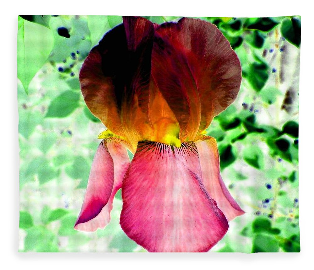 Photo Design Fleece Blanket featuring the digital art Colormax 3 by Will Borden