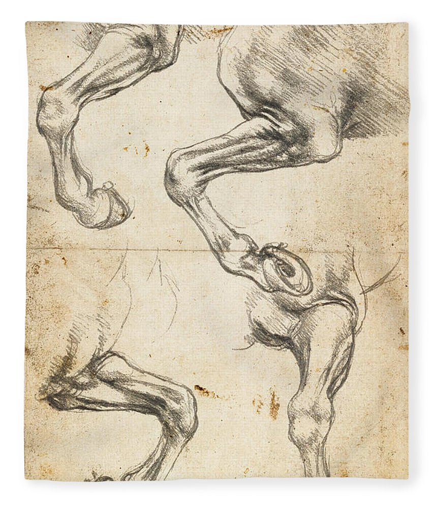 Da Vinci Horse Leg Study By Da Vinci Fleece Blanket For Sale By Tony