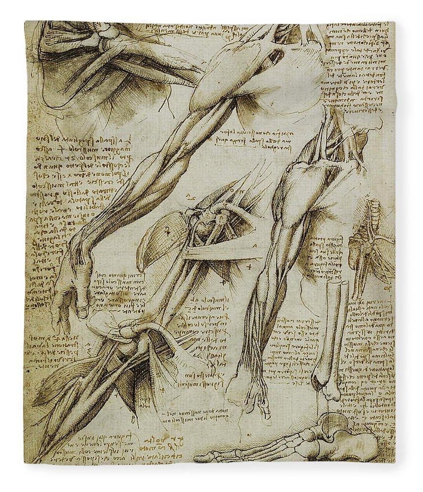 Da Vinci Man Right Arm And Shoulder Anatomy By Da Vinci Fleece ...