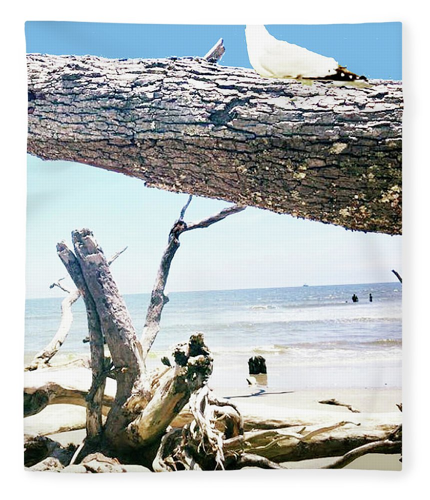Daydreams And Driftwood Fleece Blanket featuring the photograph Daydreams and Driftwood by Seth Weaver