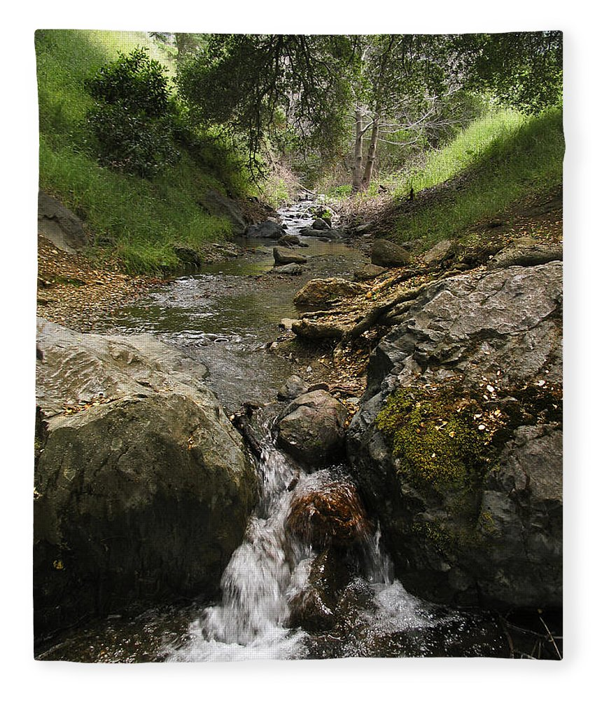 Mt. Diablo Fleece Blanket featuring the photograph Donner Creek by Karen W Meyer