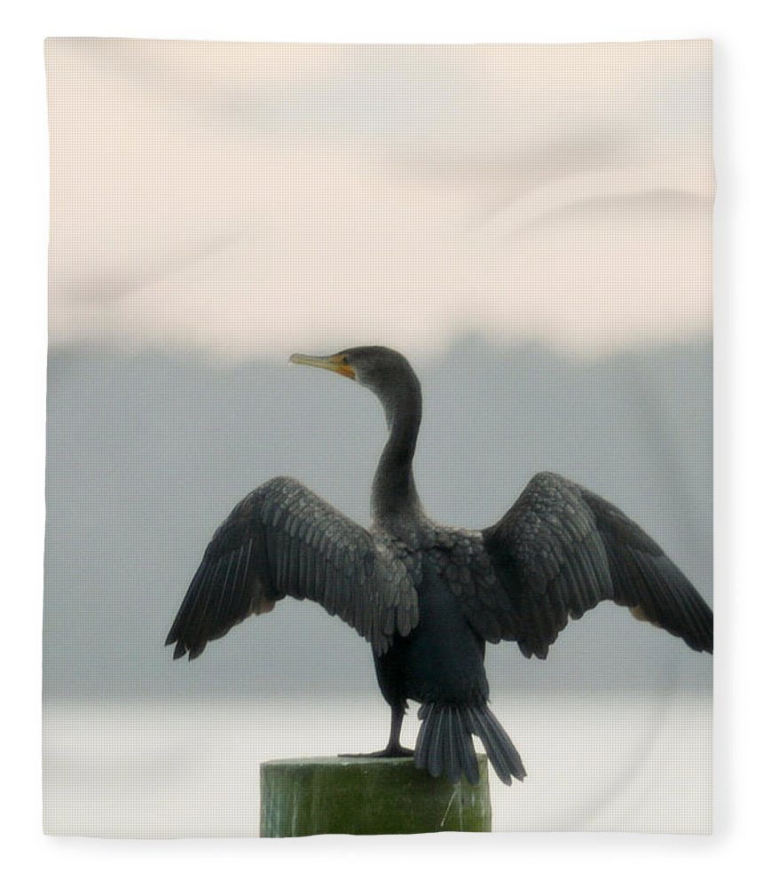 Bird Fleece Blanket featuring the photograph Drying Out by Phill Doherty