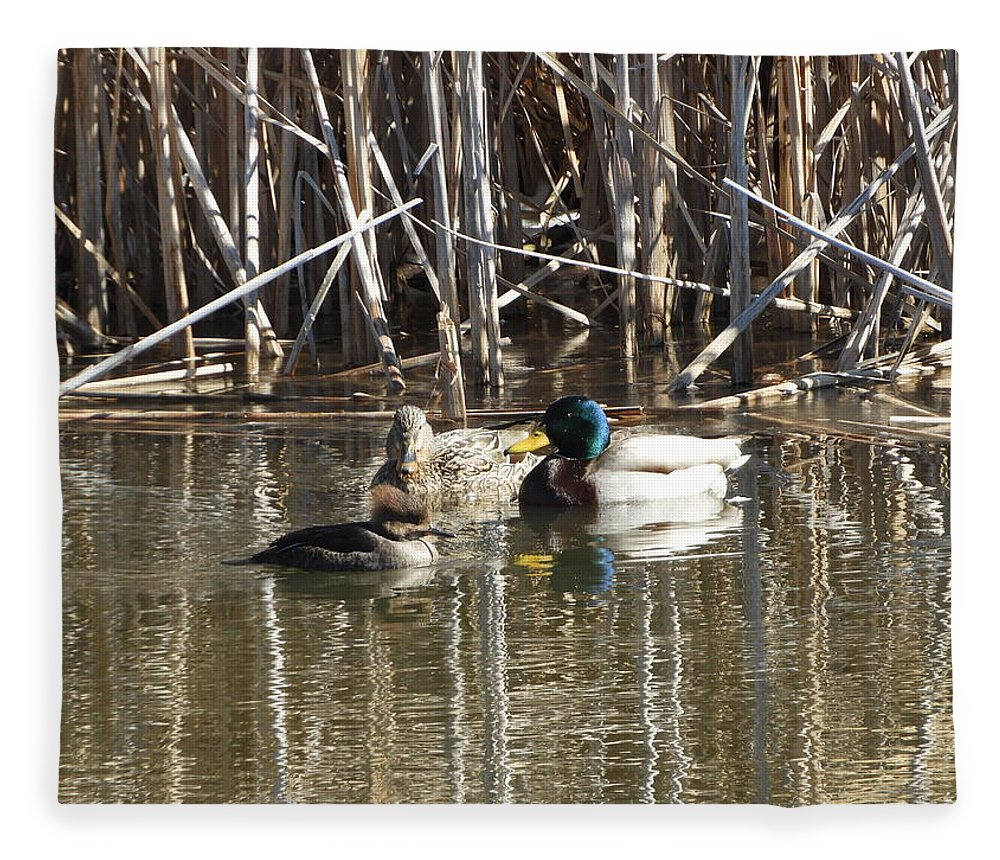 Hooded Fleece Blanket featuring the photograph Duckfusion by Red Cross
