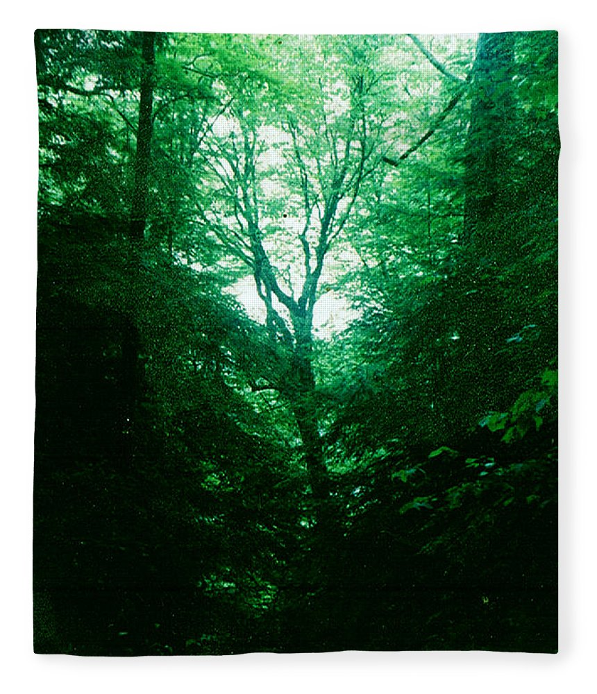 Emerald Fleece Blanket featuring the photograph Emerald Glade by Seth Weaver