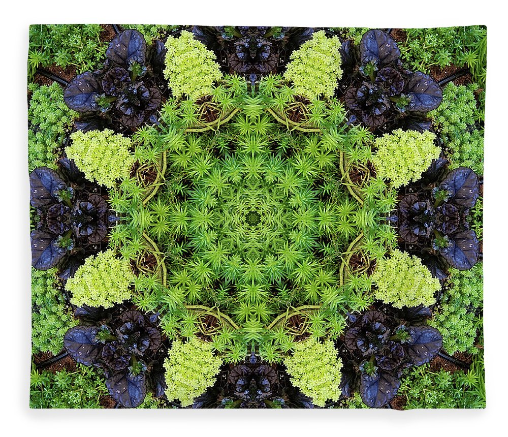 Olbrich Botanical Gardens Fleece Blanket featuring the digital art Filigree Foliage Kaleidoscope by R V James