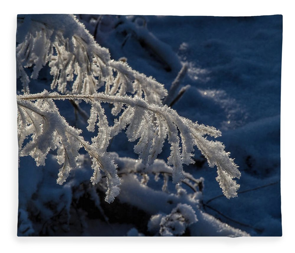 Frost Fleece Blanket featuring the photograph First Light by Alana Thrower