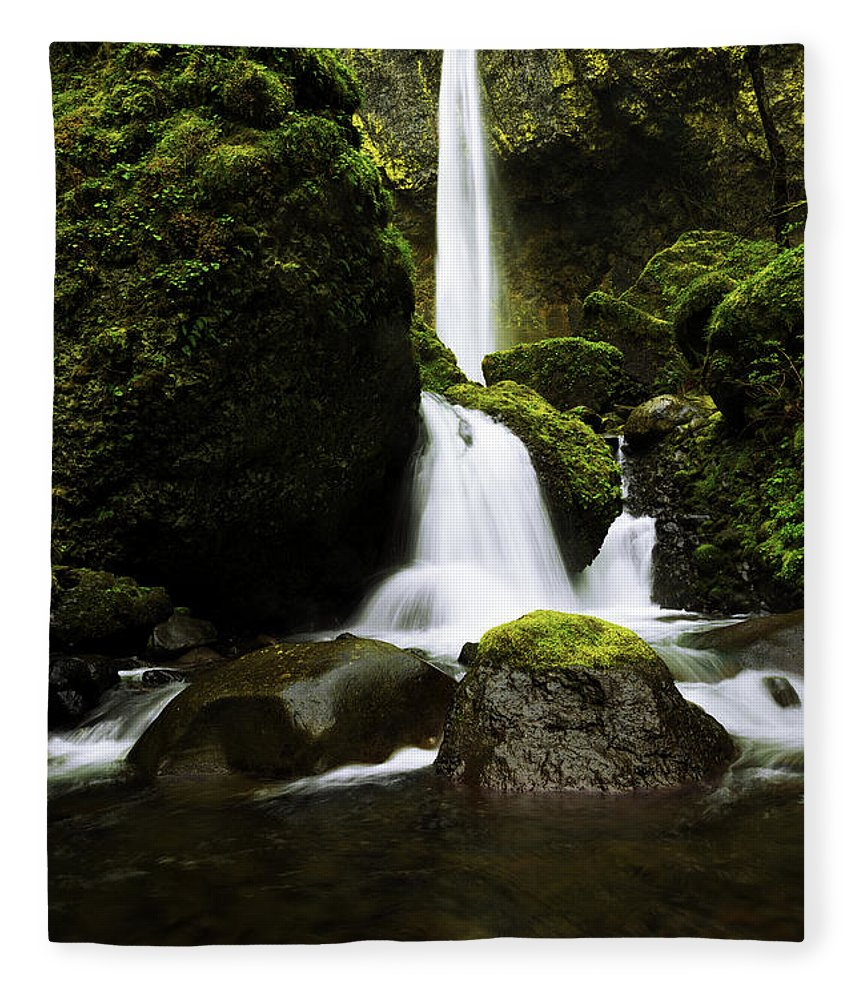 Northwest Fleece Blanket featuring the photograph Flow by Chad Dutson