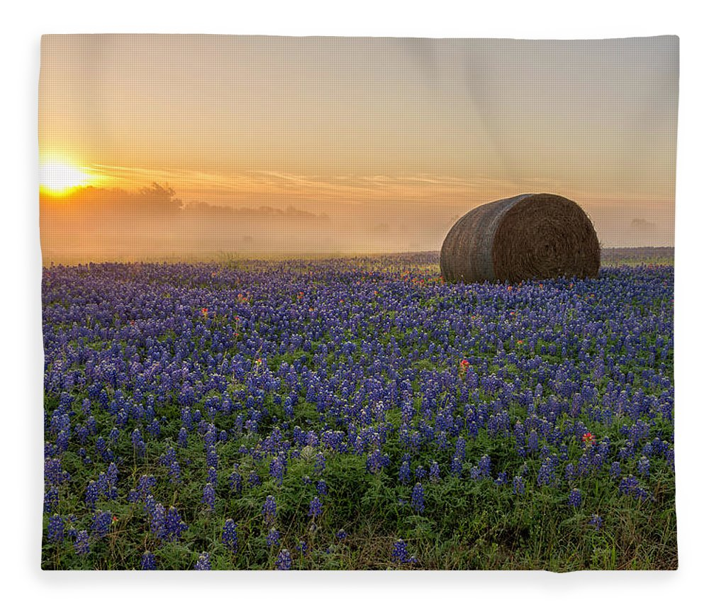 Bluebonnet Fleece Blanket featuring the photograph Foggy Bluebonnet Sunrise - Independence Texas by Brian Harig
