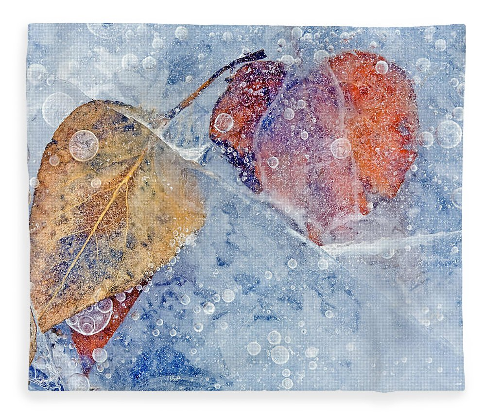 Ice Fleece Blanket featuring the photograph Fractured Seasons by Mike Dawson
