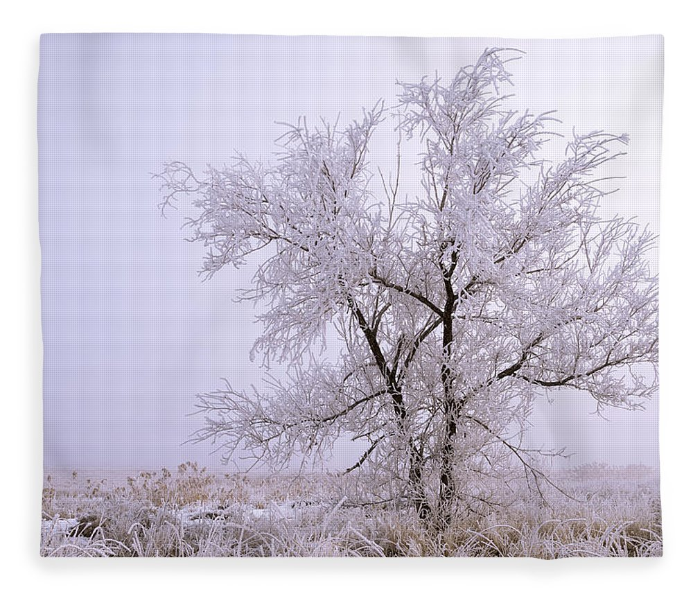 Frozen Ground Fleece Blanket featuring the photograph Frozen Ground by Chad Dutson