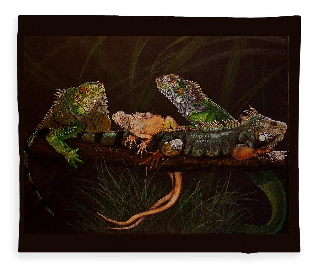 Iguana Fleece Blanket featuring the drawing Full House by Barbara Keith