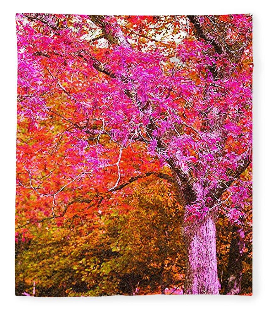 Fuschia Fleece Blanket featuring the photograph Fuschia Tree by Nadine Rippelmeyer