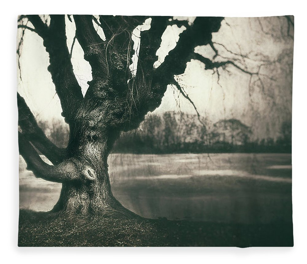 Gnarled Fleece Blanket featuring the photograph Gnarled Old Tree by Scott Norris