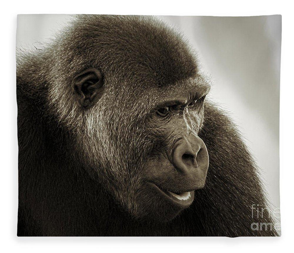 Gorilla Portrait Fleece Blanket featuring the photograph Gorilla Portrait by Mitch Shindelbower