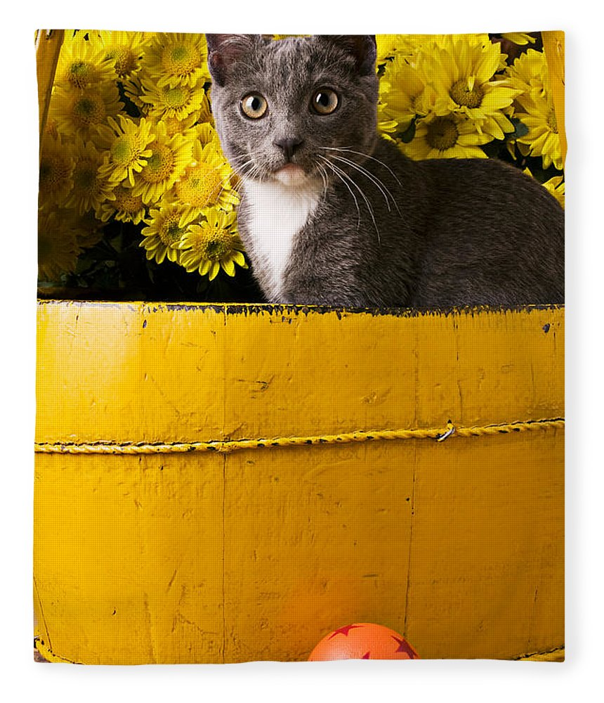 Kitten Fleece Blanket featuring the photograph Gray Kitten In Yellow Bucket by Garry Gay