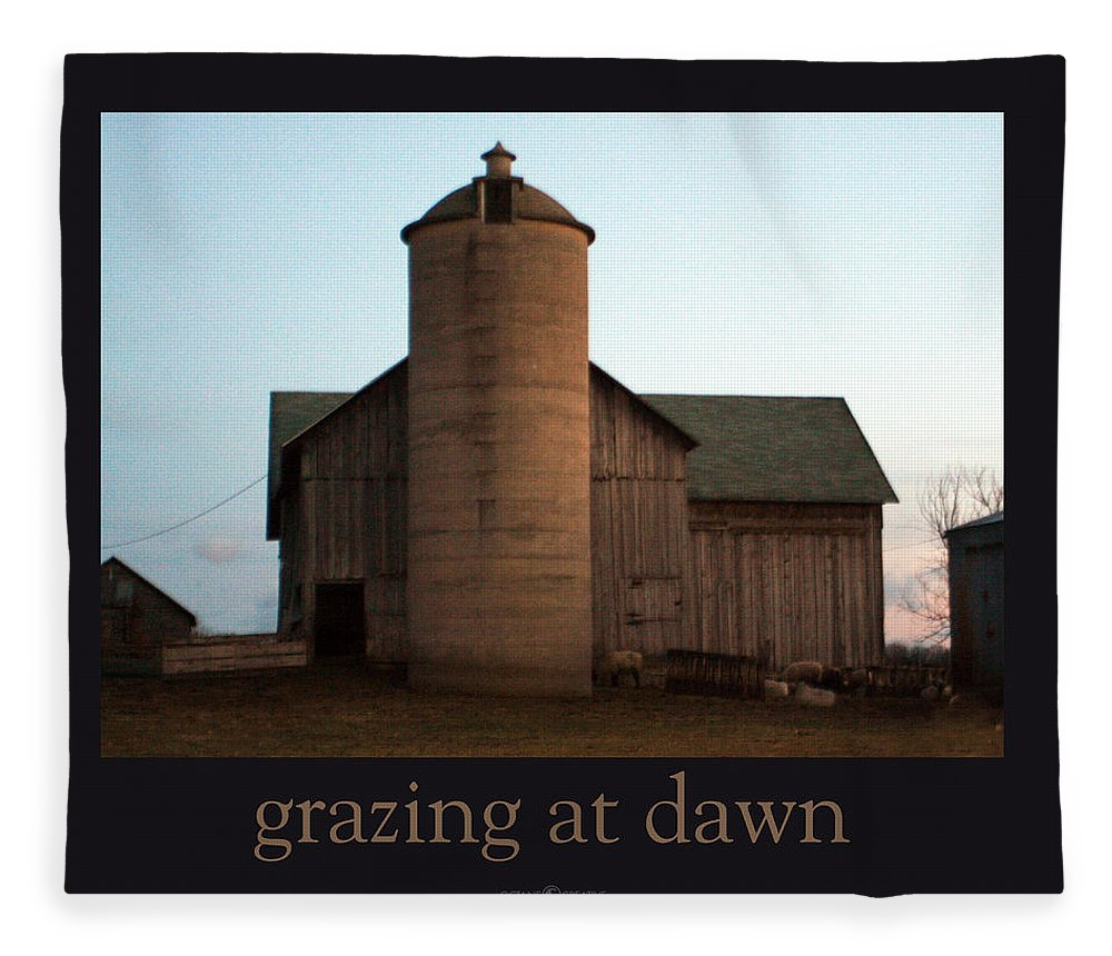 Barn Fleece Blanket featuring the photograph Grazing at Dawn by Tim Nyberg