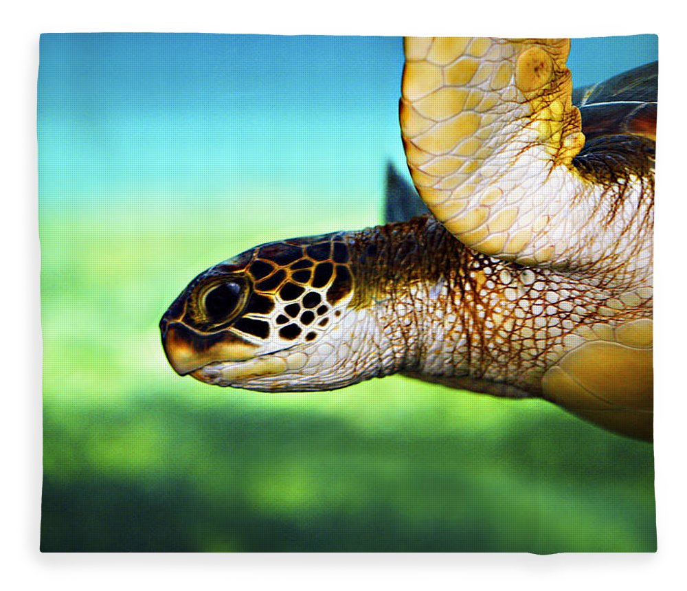 Green Fleece Blanket featuring the photograph Green Sea Turtle by Marilyn Hunt