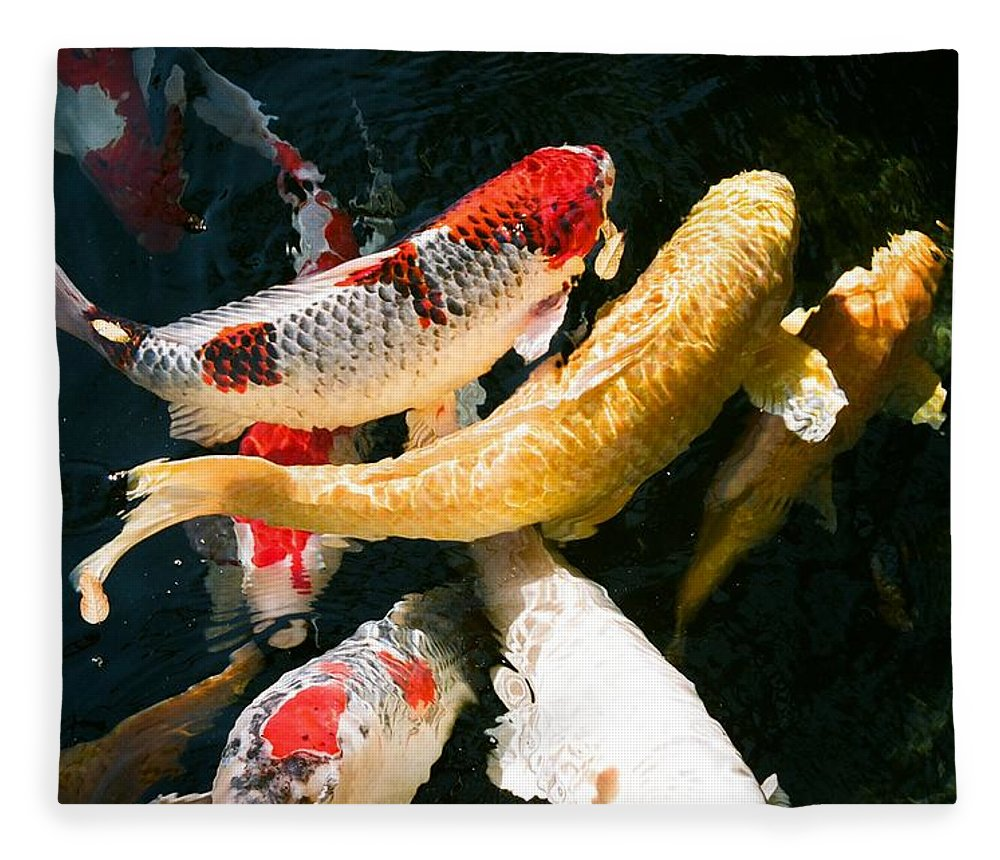 Fish Fleece Blanket featuring the photograph Group of Koi Fish by Dean Triolo