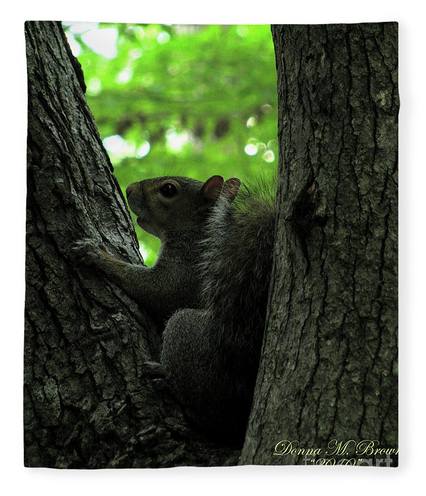 Squirrel Fleece Blanket featuring the photograph I Am Here by Donna Brown