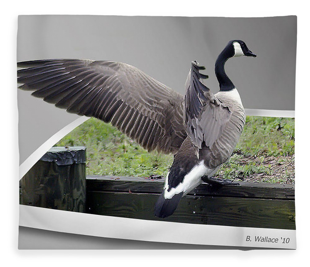 2d Fleece Blanket featuring the photograph I Made It by Brian Wallace