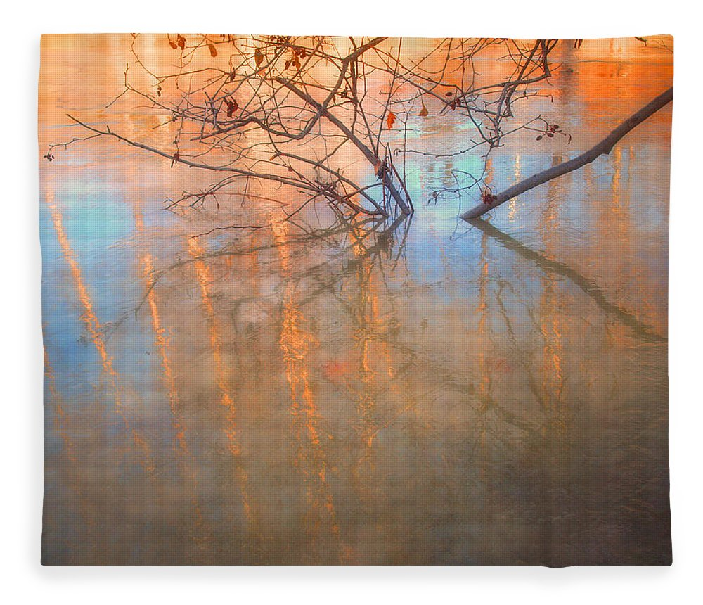 Ice Fleece Blanket featuring the photograph Ice Reflections 2 by Tara Turner