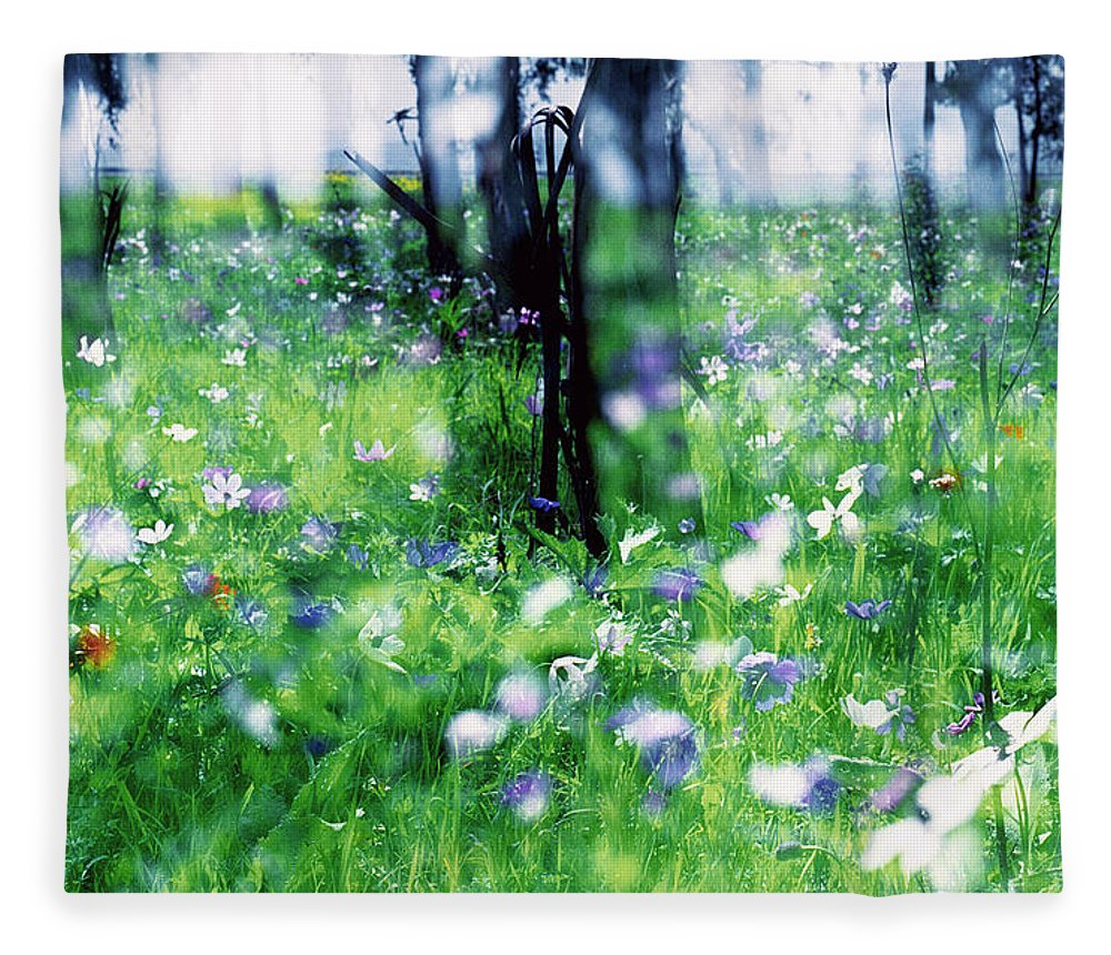 Impressionistic Fleece Blanket featuring the photograph Impressionistic Photography At Meggido 1 by Dubi Roman