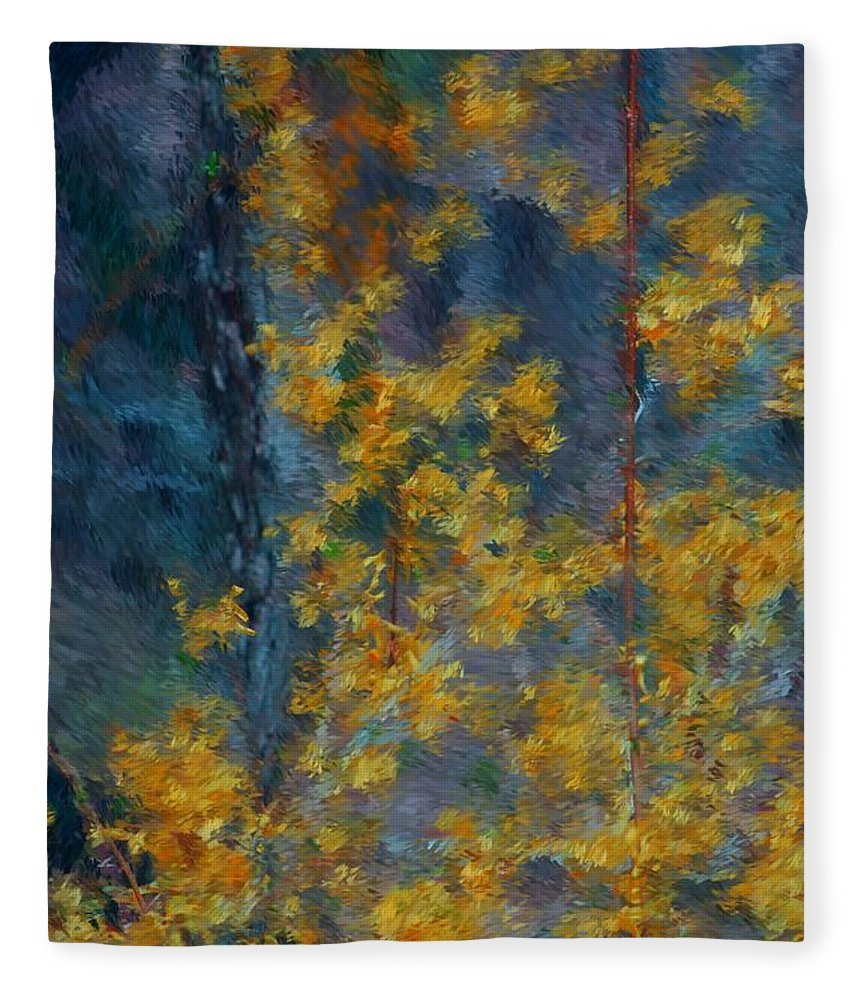 Fleece Blanket featuring the photograph In The Woods by David Lane