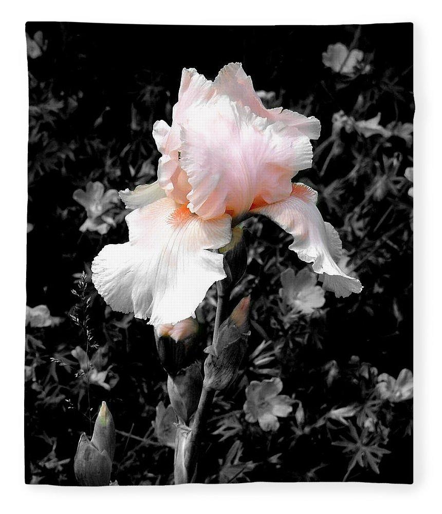 Flower Fleece Blanket featuring the photograph Iris Emergance by Steve Karol