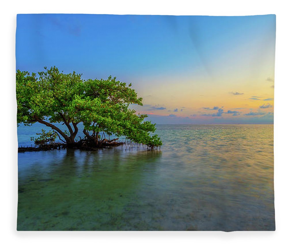 Mangrove Fleece Blanket featuring the photograph Isolation by Chad Dutson