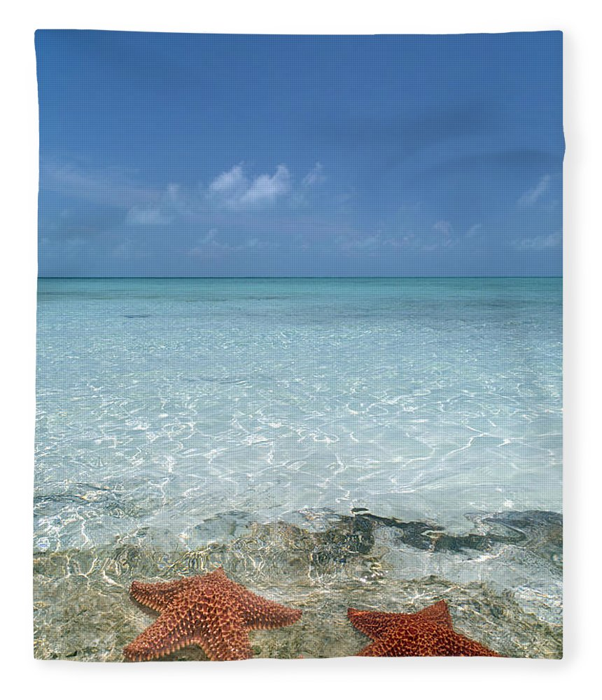 Starfish Fleece Blanket featuring the photograph Just Between Us by Betsy Knapp
