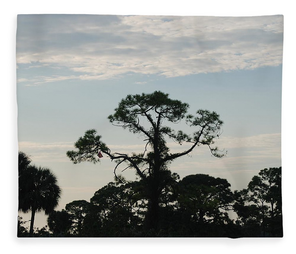 Kite Fleece Blanket featuring the photograph Kite In The Tree by Rob Hans