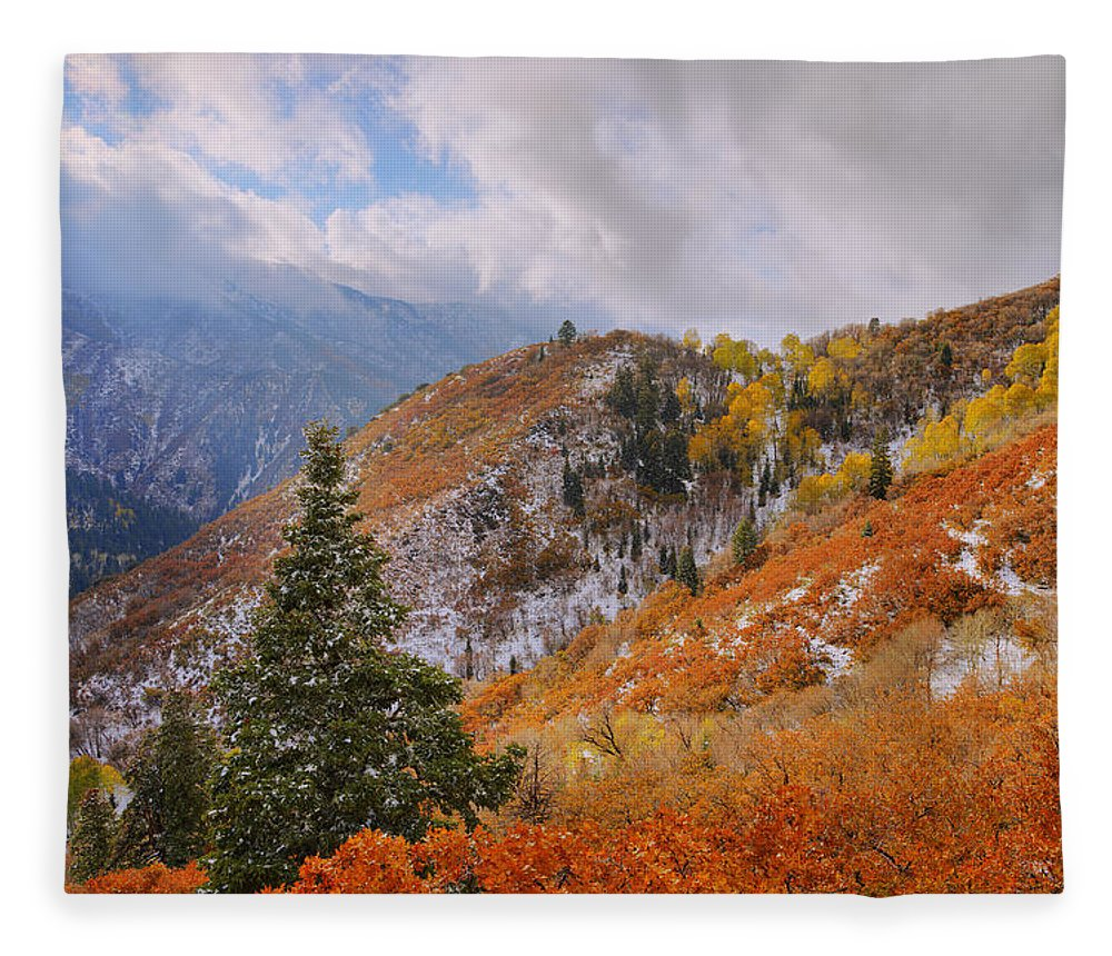 Forest Fleece Blanket featuring the photograph Last Fall by Chad Dutson