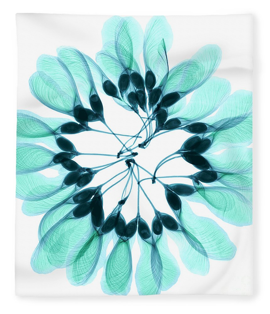 Nature Fleece Blanket featuring the photograph Maple Seeds X-ray by Ted Kinsman