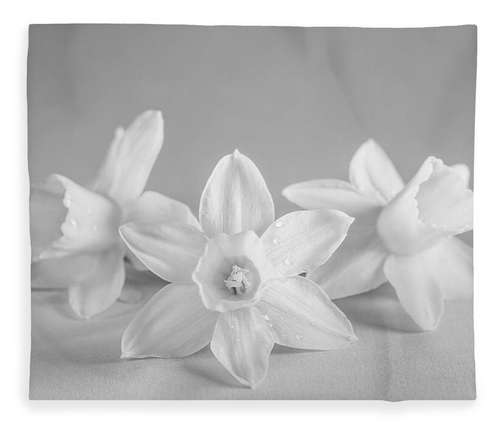 Mini Narcissus Fleece Blanket featuring the photograph Mini Narcissus Black And White 2 by Iris Richardson