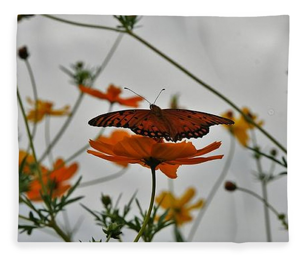 Monarch Butterflies Fleece Blanket featuring the photograph Monarch on the River by Leon Hollins III