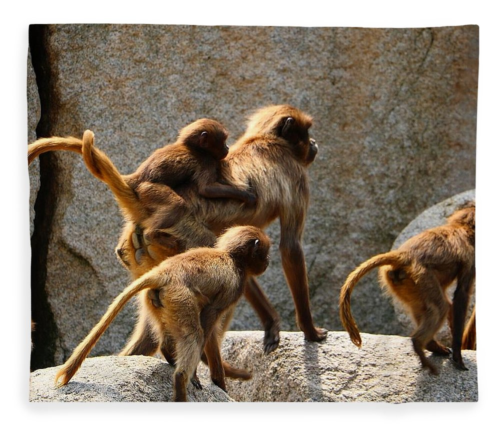 Animal Fleece Blanket featuring the photograph Monkey Family by Dennis Maier