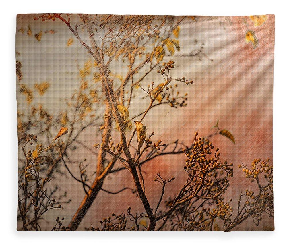 Flower Fleece Blanket featuring the photograph Morning Light by John M Bailey