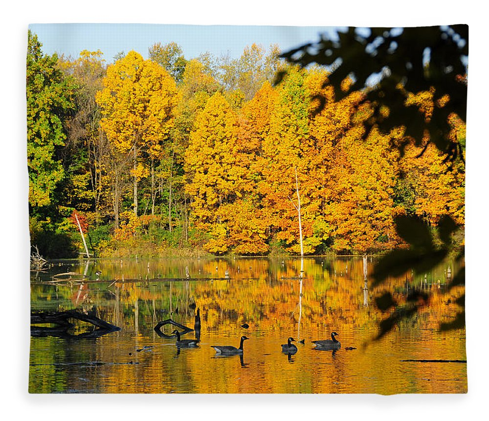 Geese Fleece Blanket featuring the photograph On Golden Pond 2 by David Arment