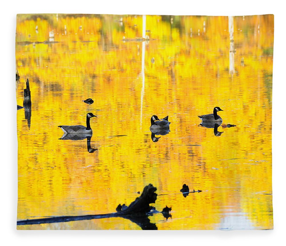 Fall Fleece Blanket featuring the photograph On Golden Pond by David Arment