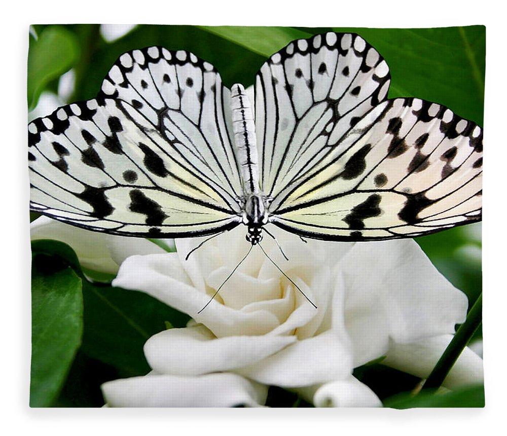 Paperkite Fleece Blanket featuring the photograph Paperkite On Gardenia by Kristin Elmquist