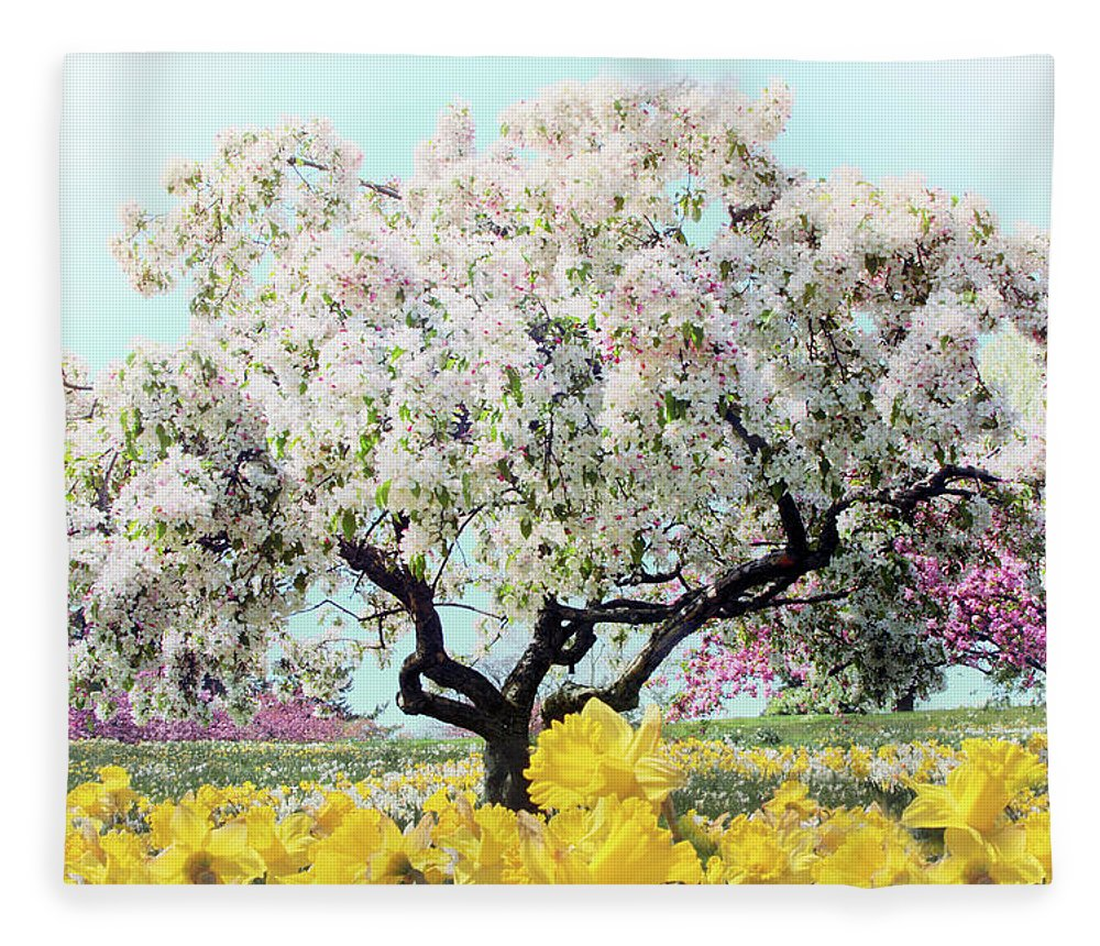 Crabtree Fleece Blanket featuring the photograph Pastel Park by Jessica Jenney
